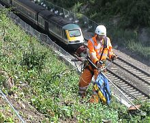 Vegetation clearance on rail cutting